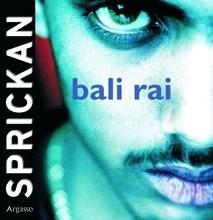Ljudbok Sprickan av Bali Rai