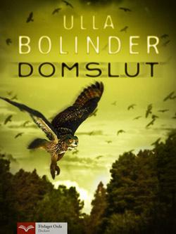 Domslut av Ulla Bolinder