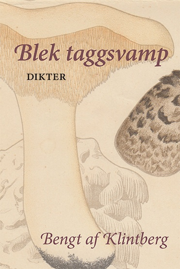 Blek taggsvamp av Bengt af Klintberg